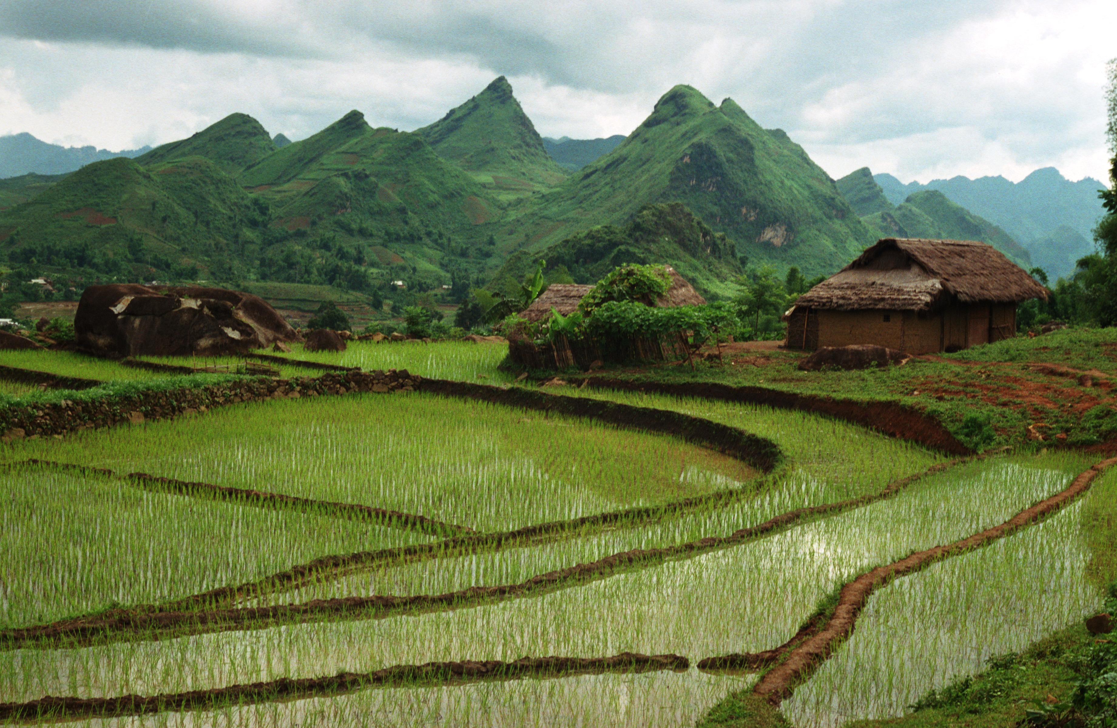 Đất đai và tập quán | Open Development Vietnam